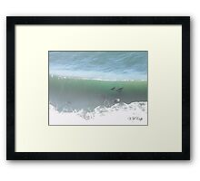 Sea Lions Body Surfing (Oregon Coast, OR, USA) Framed Print