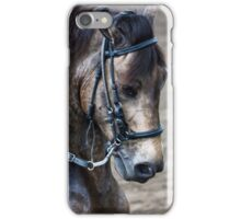 Paso Fino Show Horse iPhone Case/Skin