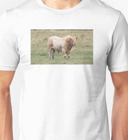 Charolais Bull. Unisex T-Shirt
