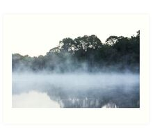 Floating Mist Art Print
