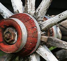 Wagon Wheel by knobby