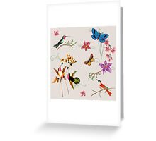 Butterflies Hummingbirds and Flowers Greeting Card
