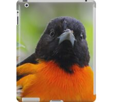 Baltimore Oriole & Apple Blossums iPad Case/Skin