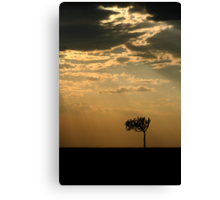 Sunset Over Masai Mara, Kenya Canvas Print
