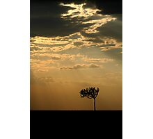 Sunset Over Masai Mara, Kenya Photographic Print