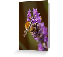 Pollen Junky Greeting Card