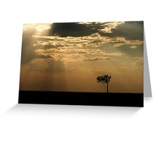 Sunset Over Masai Mara, Kenya II Greeting Card