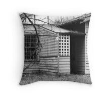 Renovation port - stalled Throw Pillow