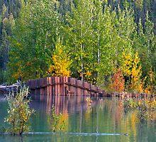 Fall Begins by exploringfox