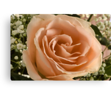 Mom's Rose Canvas Print