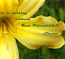 Friendship Card by Susan Blevins