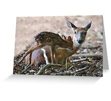 Mother and New Born Greeting Card