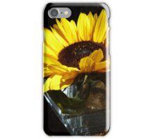 Inspired by Vermeer iPhone Case/Skin