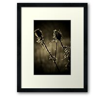 I see the sadness in their eyes...Melancholy in their cries...Devoid of all the passion...The human spirit cannot die..Look at the pain around me..This is what I'll die for Framed Print