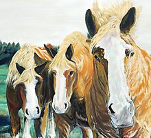 Curiosity - Belgian Draft Horses by jlkinsey