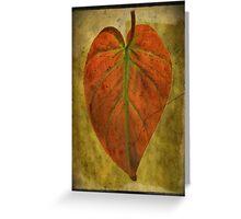 Botanical Wonder Greeting Card