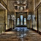 Insane Asylum by Scott Carr