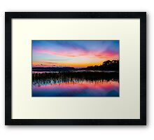 A Palette of Colors Framed Print