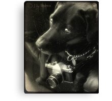 The Phodographer Canvas Print
