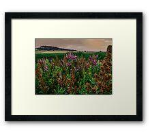 Early Light at Finley Refuge Framed Print
