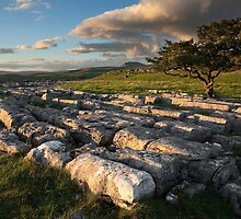 A Winskill Evening by SteveMG