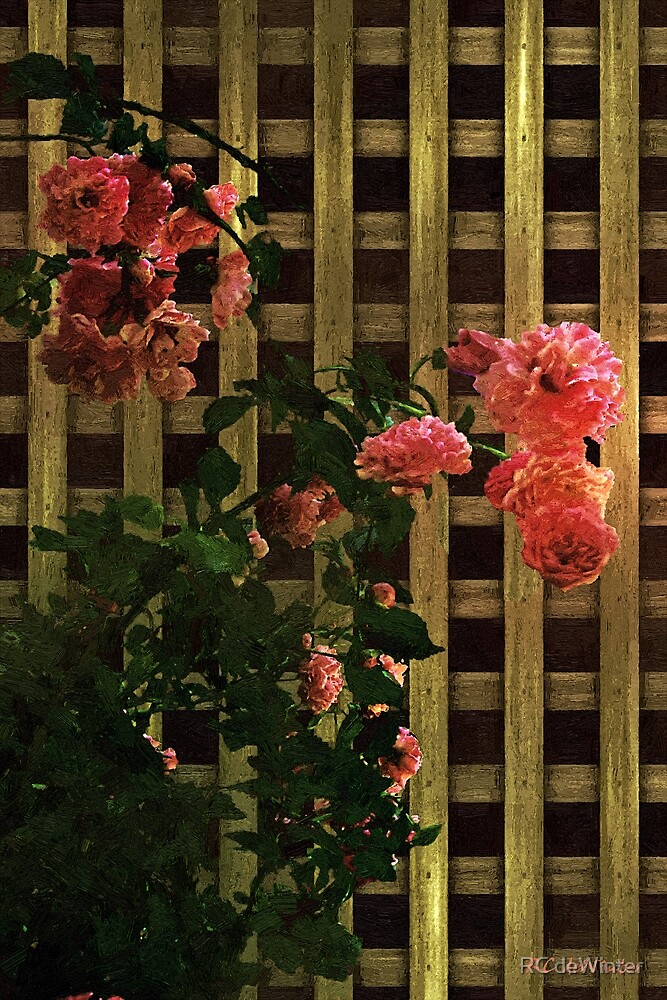 Old Roses, Old Wood by RC deWinter