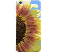 Sunflower close up iPhone Case/Skin