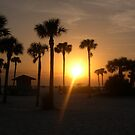 A Siesta Key Sunset by ThePhotoMaestro