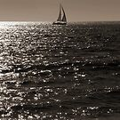 Waves & Sailboat One by tom j deters