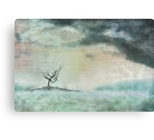 The island of solitude Canvas Print