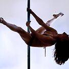 Pole Art  - Tail Split by hannahelizabeth