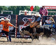 Bull Riding - bull fighter at work at rodeo Photographic Print