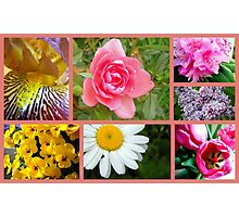 Another Garden Collage Photographic Print