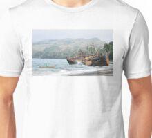 Traditional genius Unisex T-Shirt