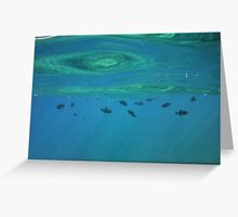Just Below the Surface Greeting Card