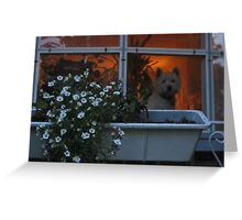 When are you coming home? Greeting Card