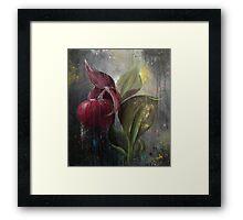 Orchid Bulb Framed Print