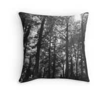 In Rememberance Throw Pillow
