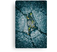 Virgo's cluster Canvas Print