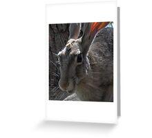 (Anthropomorphic Jill) Greeting Card