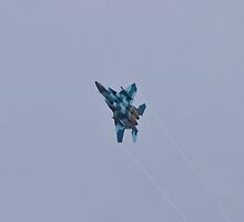 F-15 Strike Eagle Aggressor Vapor Trails by Henry Plumley