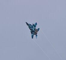 F-15 Strike Eagle Aggressor Vapor Trails by Henry Plumley