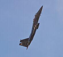 F-15 Strike Eagle by Henry Plumley