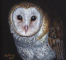 Barn Owl by artbyakiko