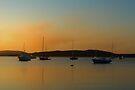 Salamander Bay Sunset ~ No 1 by Rosalie Dale