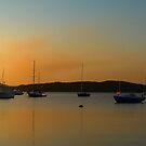 Salamander Bay Sunset ~ No 1 by Rosalie Dale