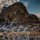 La rocca del castello by Andrea Rapisarda