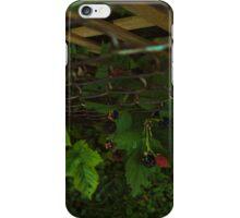 Rasperries iPhone Case/Skin