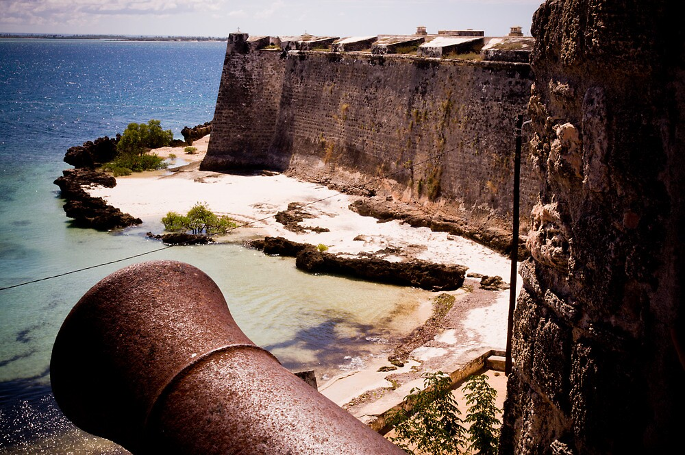 Canons of History, Fort São Sebastião (IlhaMoç) by Tim Cowley