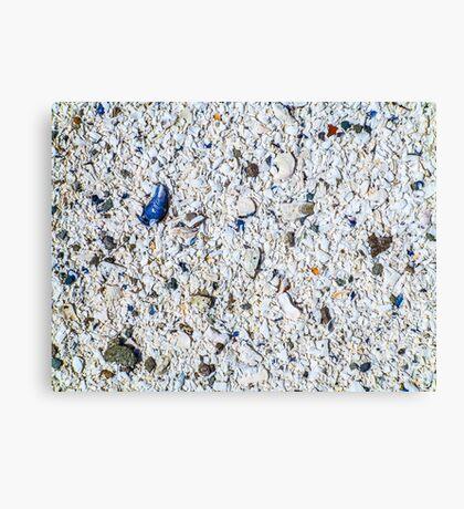 Little Blue Shell Canvas Print